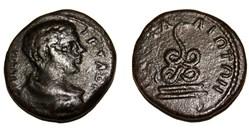 Geta / Pautalia, Thrace / Serpent / Rare