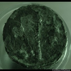 monnaie antique romaine denier cesar