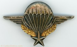 Brevet parachutiste