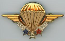 Insigne Instructeur Parachutiste Militai...