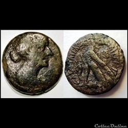 Bronze 80 drachmes Cléopâtre VII 51-29 a...