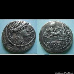 monnaie antique romaine plautia denier