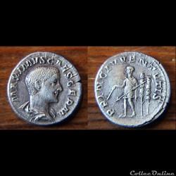 Maximus Caesar - denier - PRINC IVVENTUTIS