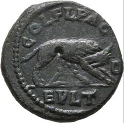 Philippus I AE she-wolf
