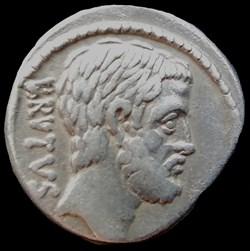 La République brutusienne